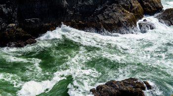 Algenöl Meereswasser